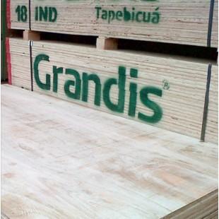 Fenólico Grandis Industrial 6 mm - 1,22 x 2,44 mts